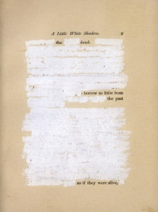 Mary Ruelfe poem from _A Little White Shadow_ (Wave Books, 2006)