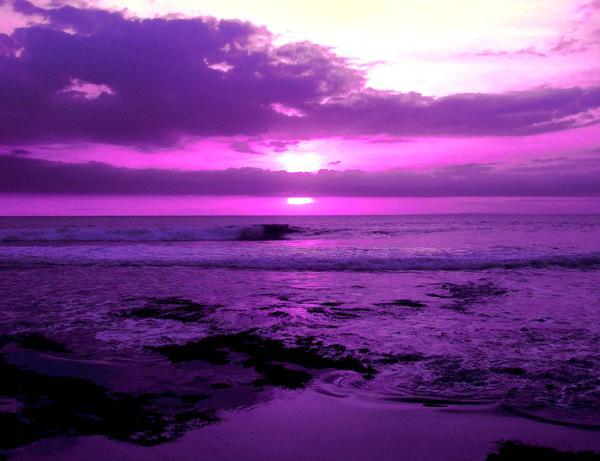 طريقه كرواسان شوكولا بالبندق 2013 purple-sunset.jpg